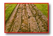Photo of furrowed soil